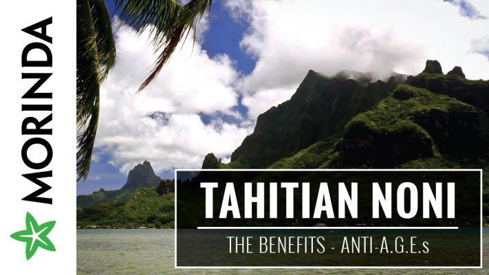 tahitian noni liquid supplements